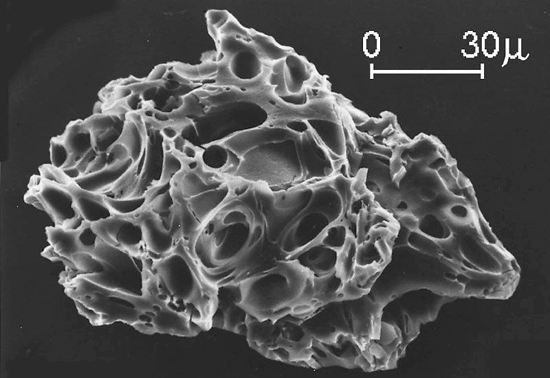 Ash Grain (USGS) - not biological but interesting nonetheless